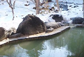温泉(白濁)